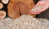 Wood pellets. An introduction
