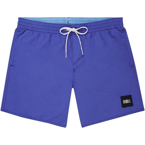 O'Neill Quick Dry Volley Shorts ~ Vert blue