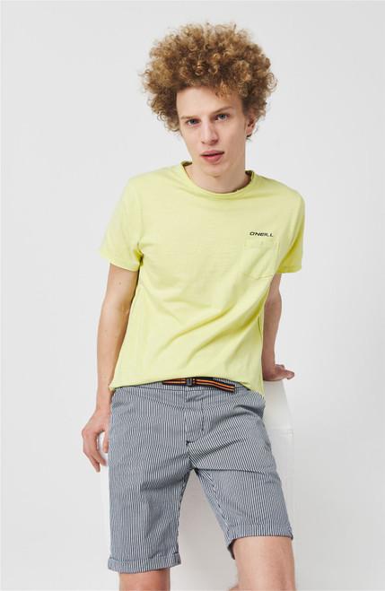 O'Neill Men's T-Shirt ~ LM mint