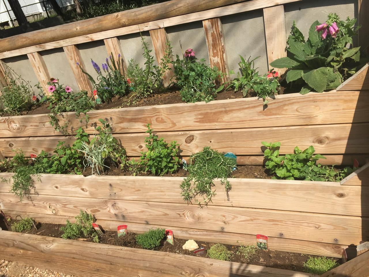 The Herb Room Garden