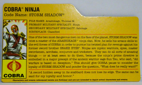 Cobra Ninja Storm Shadow Filecard GiJoe