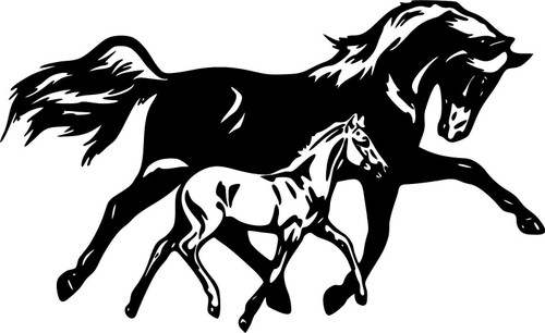 Horse Filly Colt Rodeo Western Farm Car Truck Window Laptop Vinyl Decal Sticker Black And White
