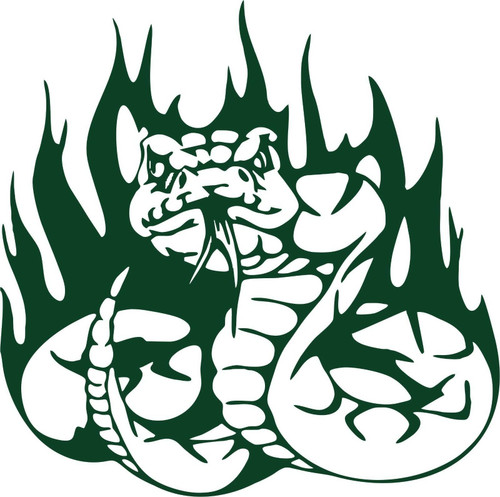 Snake Serpent Reptile Predator Flame Car Truck Window Laptop Vinyl Decal Sticker Green