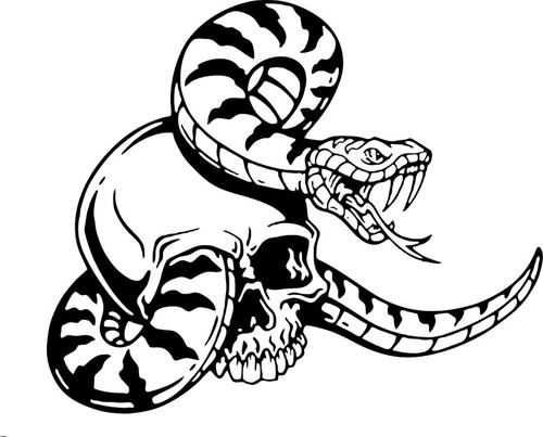 Snake Skull Serpent Car Truck Window Laptop Vinyl Decal Sticker