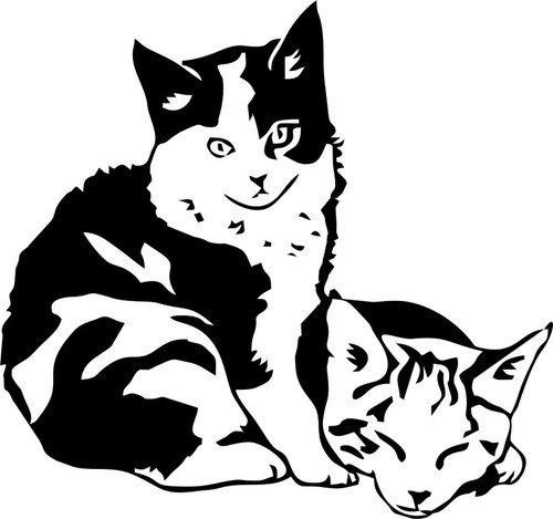 Cat Baby Kitten Pet Animal Car Boat Laptop Truck Window Vinyl Decal Sticker Black