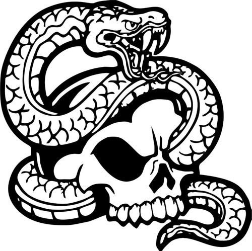 Skull Skeleton Head Snake Car Boat Truck Laptop Window Vinyl Decal Sticker Black