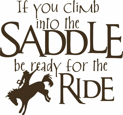Cowboy Horse Rodeo Cowgirl Western Funny Car Truck Window Vinyl Decal Sticker