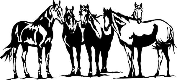 Western Cowboy Equestrian Rodeo Horses Car Truck Window Vinyl Decal Sticker Black