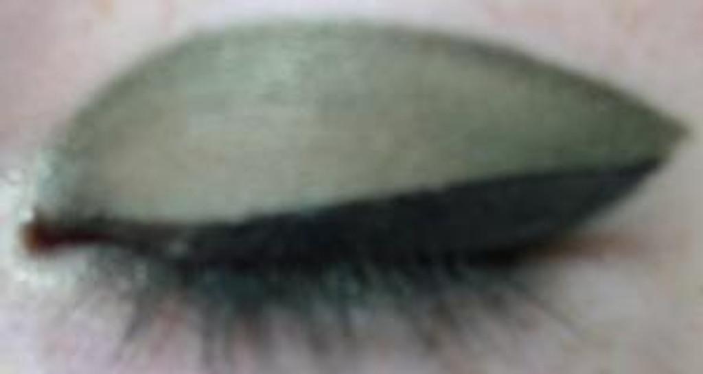 Pressed Vegan Mineral Eyeshadow - Olivene Gold