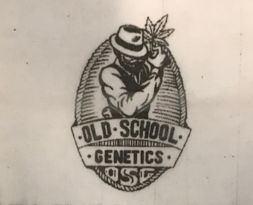OLD SCHOOL GENETICS    The Home of the Finest heirloom, and landrace Strains. all original old school genetics