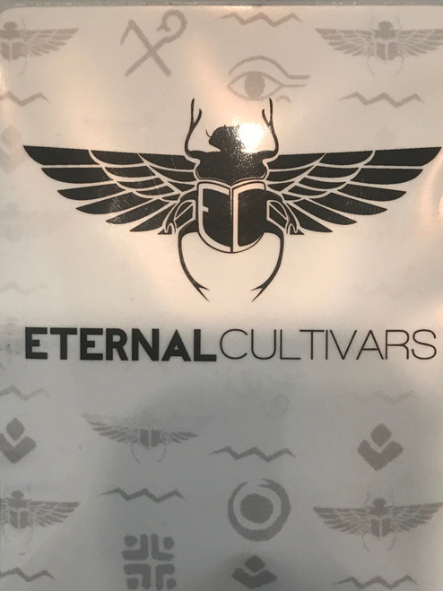 ETARNAL CULTIVARS   Eternal cultivars is a new england based breeder producing cultivars that not only produce but strive for excelency. wethere inside or out they produce amazing results