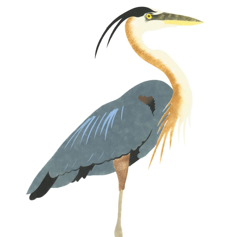 Blue Heron Wall Stencil