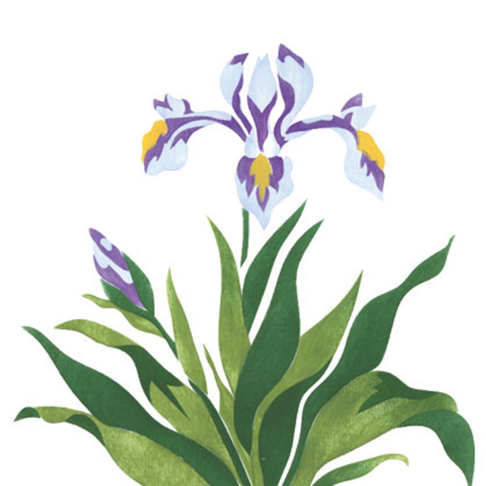 Iris Flower Wall Stencil SKU #1949
