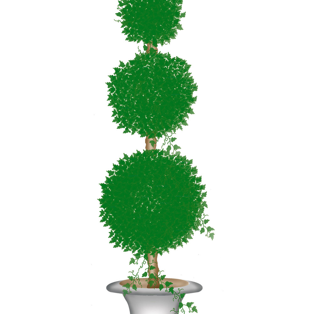 Medium Topiary with Round Balls Wall Stencil