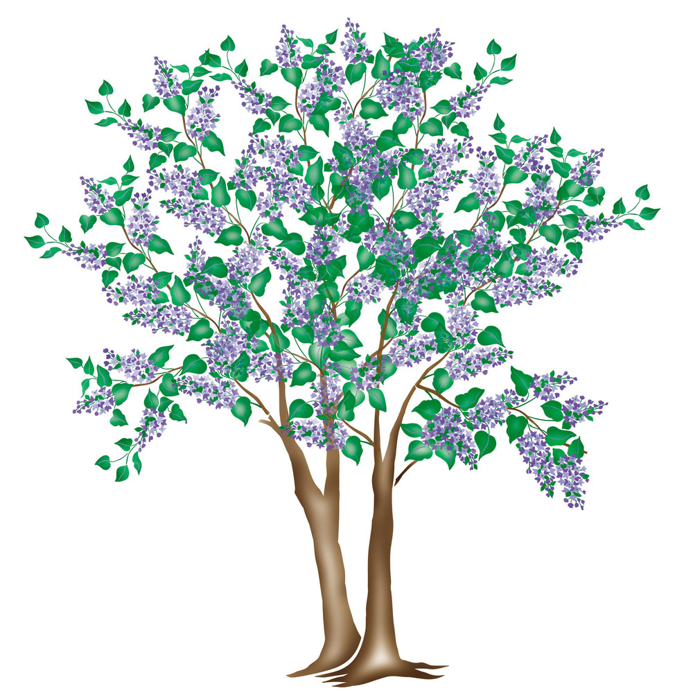 Large Lilac Tree Wall Stencil