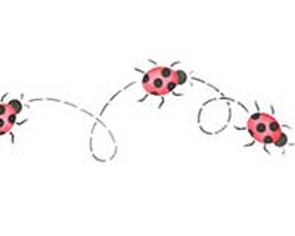 Small Ladybugs Wall Stencil