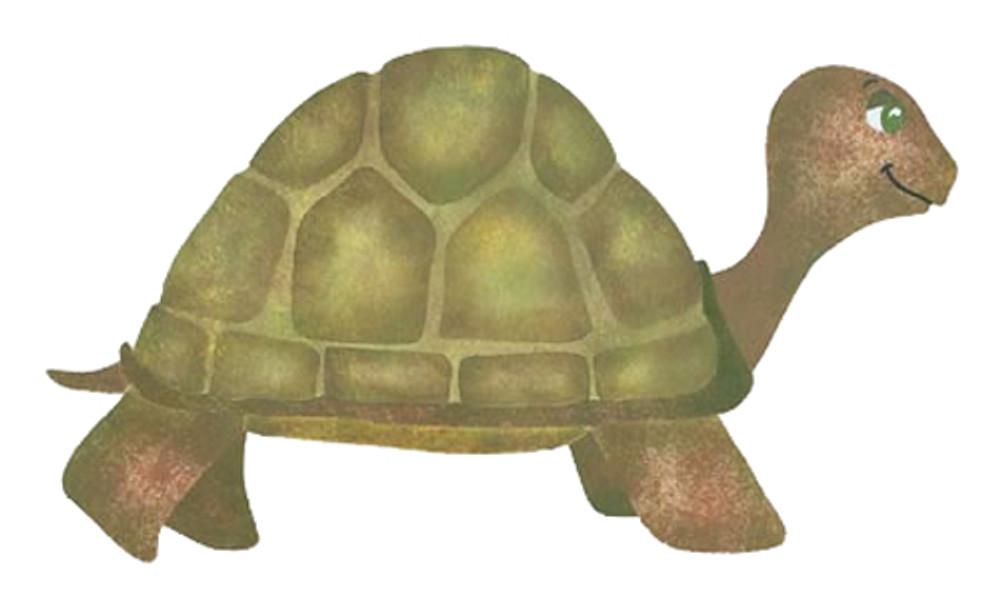 Tucker Turtle Wall Stencil