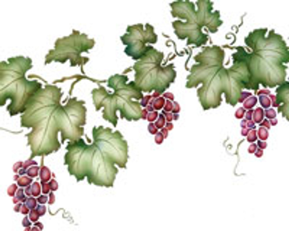 Farmhouse Grapevines by The Mad Stencilist
