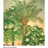 New Palm Tree Wall Stencil