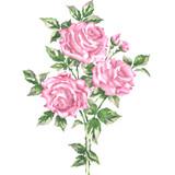Savannah Rose Bouquet SKU #3816