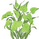 Green Tropical Plant Wall Stencil