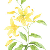 Rubrum Lily Flower  Wall Stencil