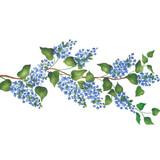 Free Flowing Lilac Branch Border Wall Stencil