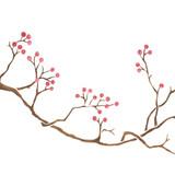 Winterberry Branch Wall Stencil
