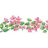 Bougainvillea Flower Border Wall Stencil
