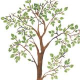 Tall Leafy Tree Wall Stencil
