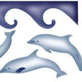 Dolphin Border Wall Stencil