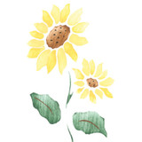 Small Single Sunflower Craft Stencil