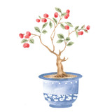 Winterthur Chinese Parlor Apple Tree Wall Stencil