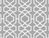 Contemporary Lattice All Over Wall Stencil