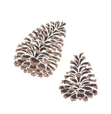 Pine Cones Set Wall Stencil by DeeSigns
