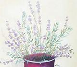 Lavender Wall Stencil by DeeSigns