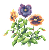 Pansies Wall Stencil by The Mad Stencilist