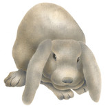 Lop Eared Bunny by The Mad Stencilist