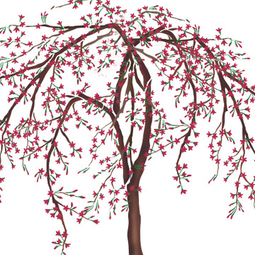 Weeping Cherry Tree Wall Stencil