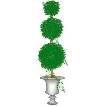 Tall Topiary with Round Balls Wall Stencil