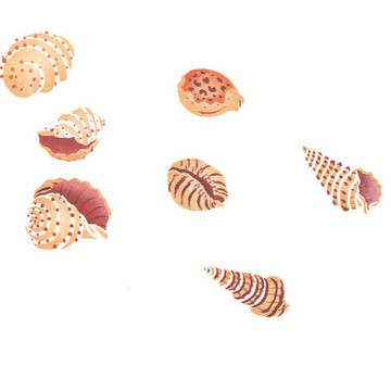 My Shell Collection Wall Stencil by DeeSigns