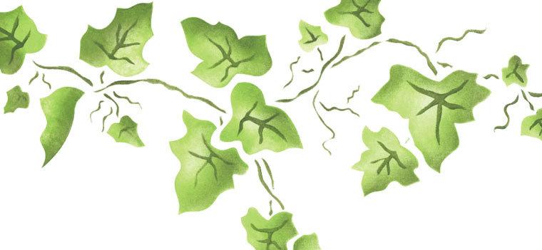 Ivy and Fern Wall Stencils