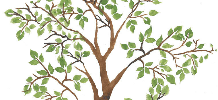 Tree and Branches Wall Stencils