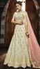 Off White Color Shaded Net Choli Skirt
