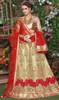 Embroidered Beige Color Net Choli Skirt