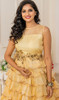 Beige Color Shaded Net Gown