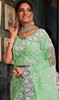 Designer Light Green Color Fancy Net Sari
