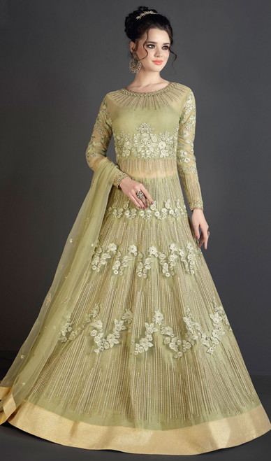 Anarkali Suit, Net Fabric in Light Green Color Shaded