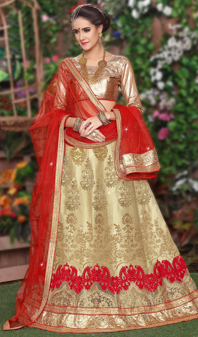 Embroidered Beige Color Net Choli Skirt