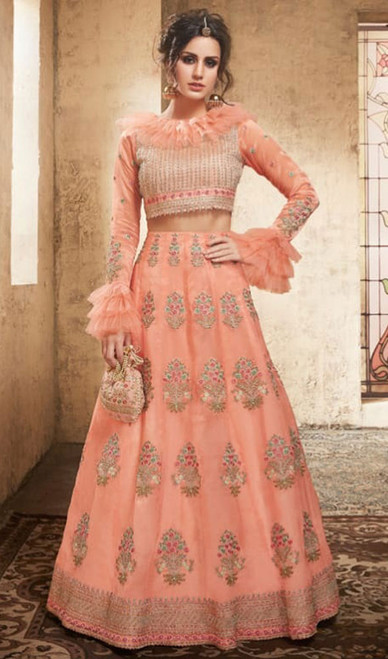Peach Color Embroidered Net Cholie Skirt